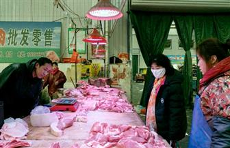 هيئة تشريعية في الصين ترجئ دورتها السنوية وتحظر تجارة الحيوانات البرية للحد من كورونا