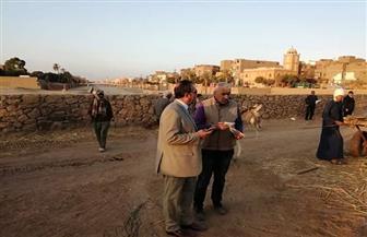 رئيس مدينة الأقصر: إزالة المرحلة الثانية لعقارات نجع أبو عصبة | صور
