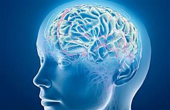 فقدان شريك الحياة يسرع تراجع كفاءة المخ