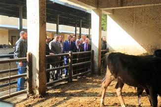 محافظ كفرالشيخ يتفقد المدرسة الثانوية الزراعية المشتركة | صور