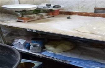 19 محضرا ضد مطاعم في أسيوط لعدم اتباع اشتراطات البيئة   صور