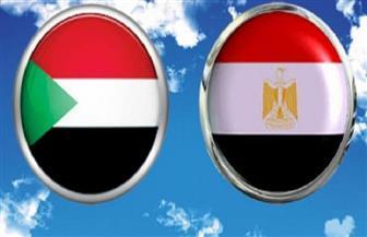 خبراء: الزراعة والإنتاج الحيواني كلمة السر في تعزيز التعاون الاقتصادي بين مصر والسودان