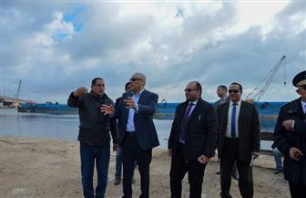 محافظة الإسكندرية تشن حملة لإزالة التعديات على بحيرة مريوط| صور