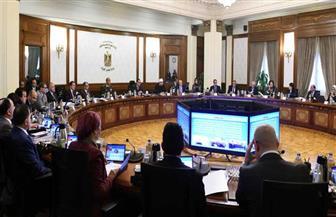 الحكومة توافق على  تحديد اختصاصات نائب وزير السياحة ونواب وزير الاتصالات