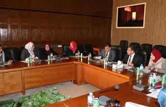 محافظة شمال سيناء تخصص لجنة اختيار الأم المثالية مارس المقبل | صور