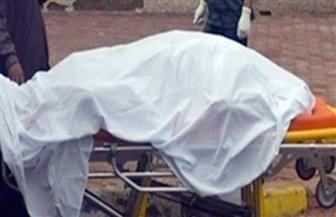 ضبط المتهمين بقتل ربة منزل تصادف مرورها أثناء مشاجرة فى أسيوط