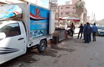 حملة لإزالة الإشغالات والتعديات بكفر الشيخ | صور