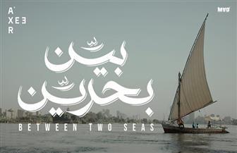 """""""بين بحرين"""" يفوز بأفضل أفيش من جمعية الفيلم للسينما المصرية"""