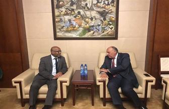 سامح شكري يلتقي وزير خارجية مدغشقر | صور