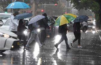 أستراليا تحتفل بهطول أمطار غزيرة أخمدت بعض حرائق الغابات