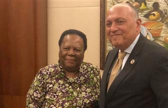 تفاصيل اجتماع سامح شكري بوزيرة خارجية جنوب إفريقيا | صور