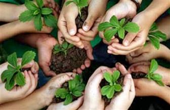وزارة البيئة تشارك المجتمع المدني لتشجير الجزيرة الوسطى بالمعادي