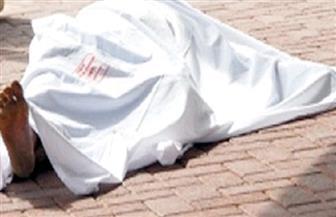 مصرع شخص وإصابة آخر في حادث تصادم أمام المدرسة الزراعية بديرب نجم