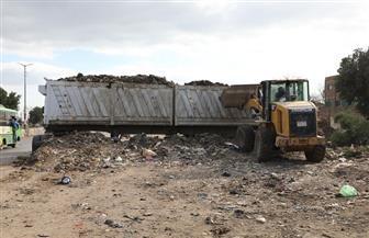 محافظ المنوفية: رفع 2500 طن نواتج هدم وتطهير بمدخل قرية شنوان | صور