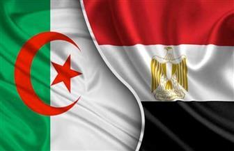 24 % نموا بصادرات مصر غير البترولية إلى الجزائر