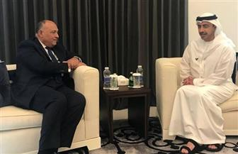 وزير الخارجية يسلم نظيره الإماراتي رسالة الرئيس السيسي بشأن سد النهضة
