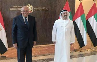 تفاصيل لقاء وزير الخارجية سامح شكري ونظيره الإماراتي الشيخ عبد الله بن زايد| صور