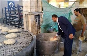 ضبط 18 مخالفة تموينية في حملة لمديرية تموين بمركز طنطا