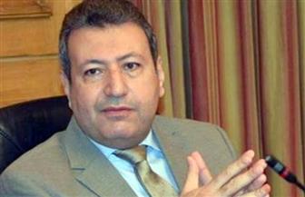 المهندس طارق شكري رئيسا لشعبة الاستثمار العقاري.. وسليمان والبستاني نائبين