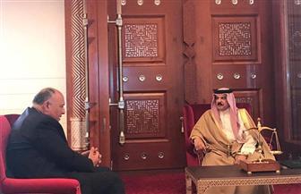 ملك البحرين يتسلم رسالة من الرئيس السيسي حول آخر مستجدات سد النهضة| صور