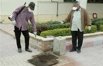 محافظ كفر الشيخ: تطهير وتعقيم ديوان عام المحافظة والمباني والحدائق | صور