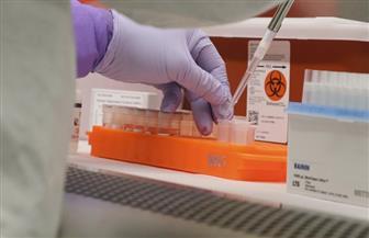 أستاذ فيروسات: التحور من عائل حيواني للإنسان سبب خطورة كورونا