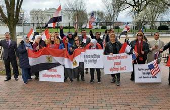 الجالية المصرية تحتشد أمام البيت الأبيض دعما لمصر في مفاوضات سد النهضة | صور