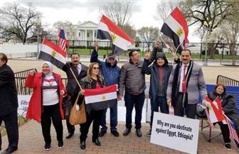 المصريون يعزفون سيمفونية أمام البيت الأبيض لدعم حق مصر في مياه النيل |صور