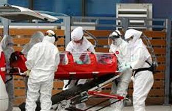 البرازيل تسجل أعلى زيادة يومية لحالات الإصابة بفيروس كورونا