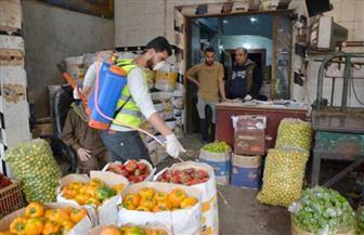 حملة لتطهير سوق الجملة للخضار والفاكهة بمشاركة المجتمع المدني في المنصورة | صور