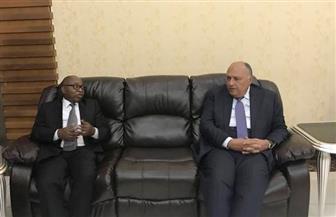 وزير الخارجية يصل تنزانيا فى ثالث محطات جولاته الإفريقية | صور