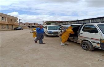 إلزام مالكي سيارات الأجرة والسائقين بتعقيم وتطهير السيارات بمطروح | صور