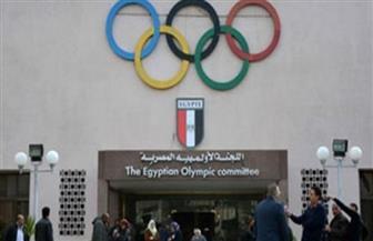 «الأوليمبية» تستمع لشكاوى الاتحادات والأندية والمسئولين ضد رئيس الزمالك
