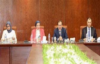 وزيرا البترول والبيئة يتابعان موقف الخطط المتكاملة للإصلاح البيئي لشركات البترول