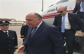 وزير الخارجية يصل النيجر آخر محطات جولته الإفريقية | صور