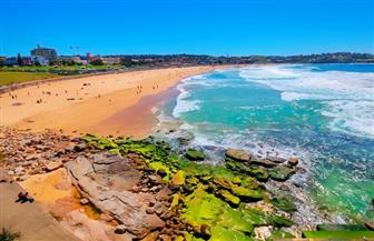 إغلاق شاطئ بوندي المزدحم في مدينة سيدني بأستراليا بعد تجاهل التباعد الاجتماعي