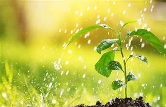 غدا.. اليوم العالمي للمياه تحت شعار «المياه وتغير المناخ»