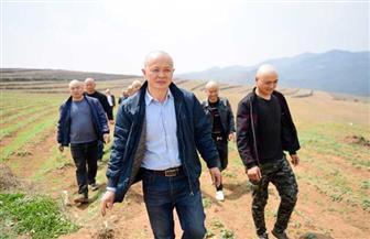 طبيب صيني يزرع 870 هكتارا من أعشاب الطب الصيني التقليدي ويحقق أرباحا خيالية | صور