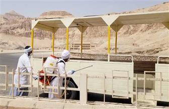 بدء أعمال التطهير للمناطق الأثرية بصعيد مصر لمواجهة  كورونا | صور