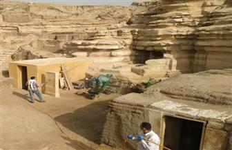 وزارة السياحة والآثار تستمر في أعمال تعقيم وتطهير المناطق والمتاحف الأثرية لمحاربة كورونا | صور