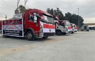 مساعدات طبية وإنسانية من مصر لأهالي قطاع غزة |صور وفيديو
