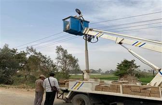 تركيب 600 كشاف ومغذيات كهرباء بتكلفة 700 ألف جنيه بمركز سوهاج| صور