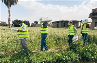 محافظ قنا: توزيع 2500 كرتونة مواد غذائية للعمالة غير المنتظمة
