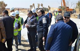 نائب وزير الإسكان يتفقد سير العمل بجميع قطاعات مشروع الحدائق المركزية بالعاصمة الإدارية الجديدة| صور