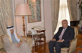 تفاصيل لقاء وزير الخارجية نظيره البحريني   صور