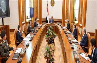 تفاصيل اجتماع الرئيس السيسى لمتابعة موقف السلع التموينية والمواد الغذائية الأولية في الأسواق المحلية