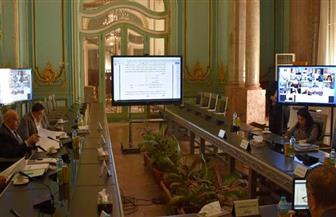 مجلس جامعة عين شمس يعقد اجتماعه بالفيديو كونفرانس | صور