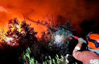 مقتل 19 في حريق غابات بإقليم سيتشوان الصيني