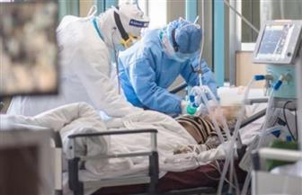 إصابات «كورونا» في ألمانيا تتجاوز 65 ألف حالة والوفيات تبلغ 664 حالة