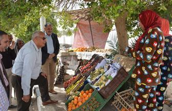 محافظ الوادي الجديد: تحويل سوق المروة لسوق حضاري بالخارجة | صور